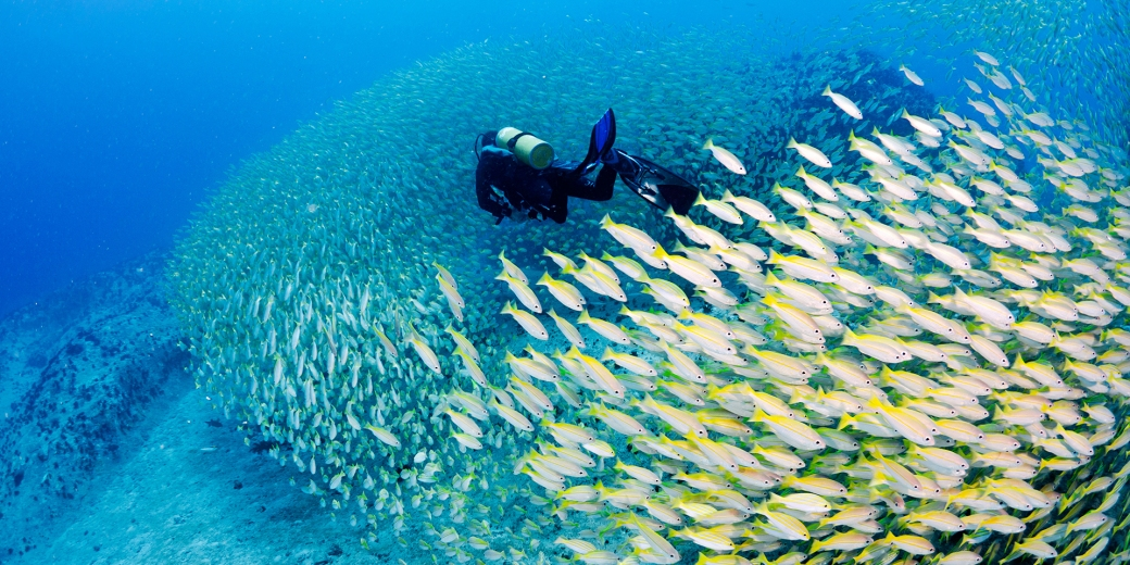 scuba-diving-seychelles